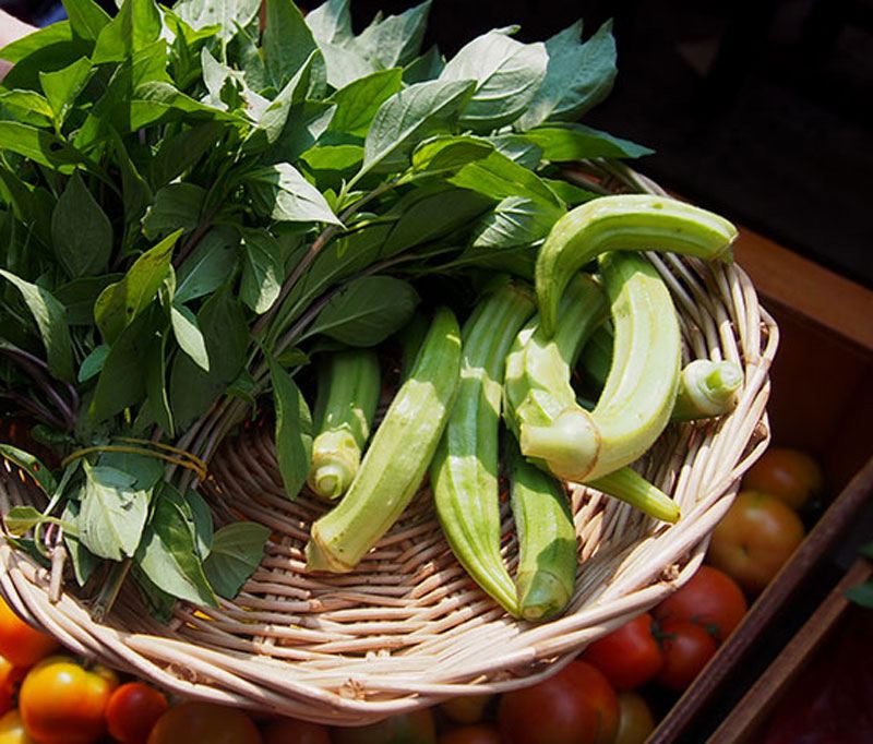 basket-of-okra-and-basil