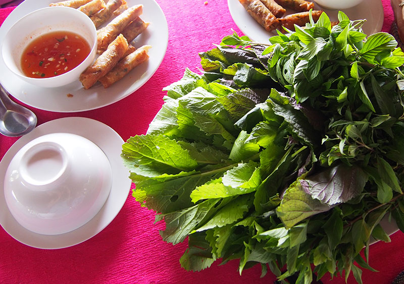 Fresh-herbs-and-spring-rolls
