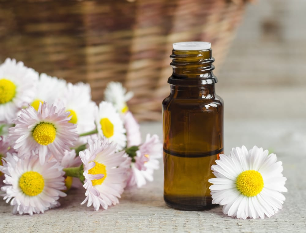 Roman Chamomile can help with night tremors