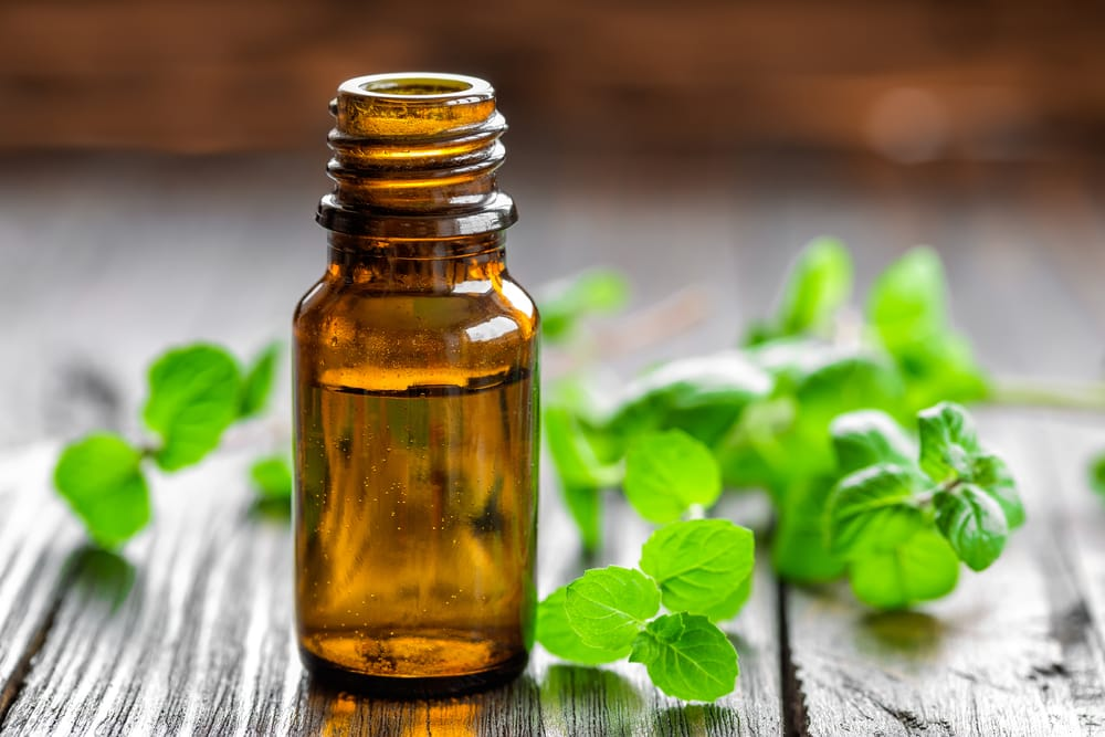 Peppermint essential oil can help treat hives.